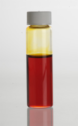 Manuka (Leptospermum scoparium) Essential Oil in clear glass vial.