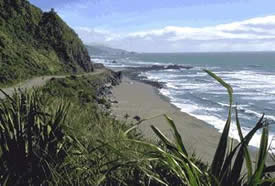 The coast road to Punakaiki